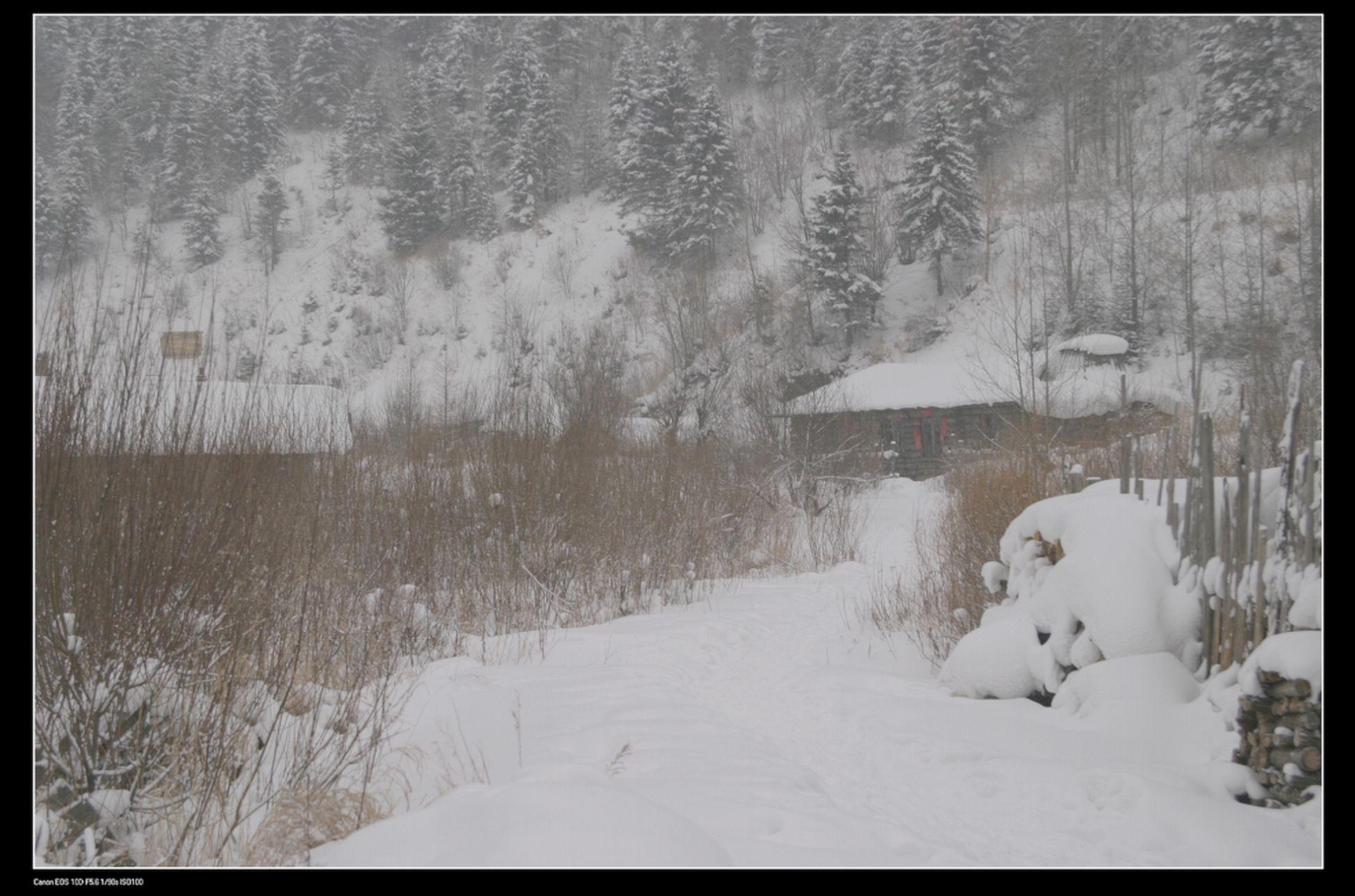 有雪的冬天真美! - 深圳房地产信息网论坛