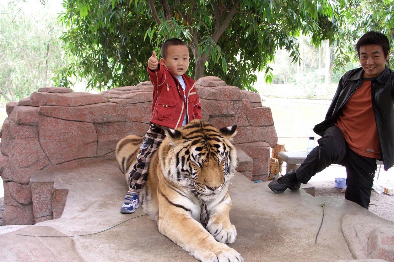今天去动物园啦. - 深圳房地产信息网论坛