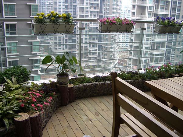 室内阳台花园实景图片