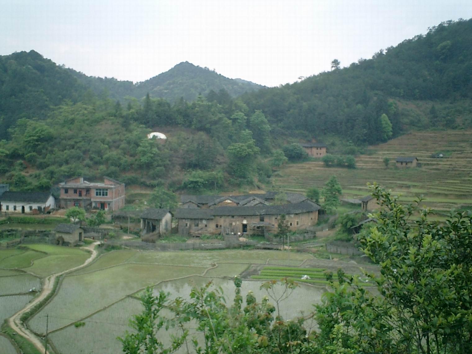 春天岭南风景照片