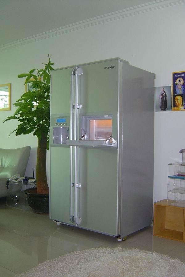 双开门冰箱放在客厅