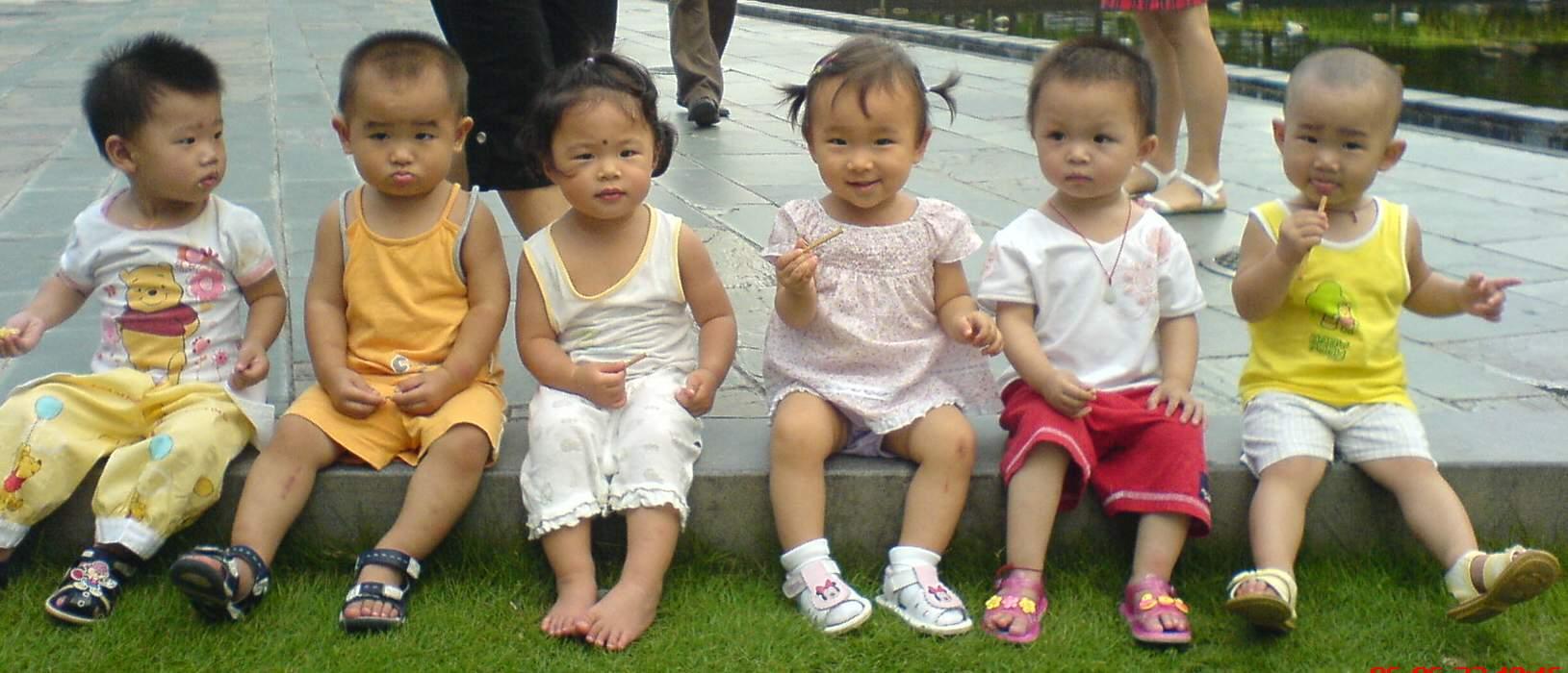 一群可爱的宝宝