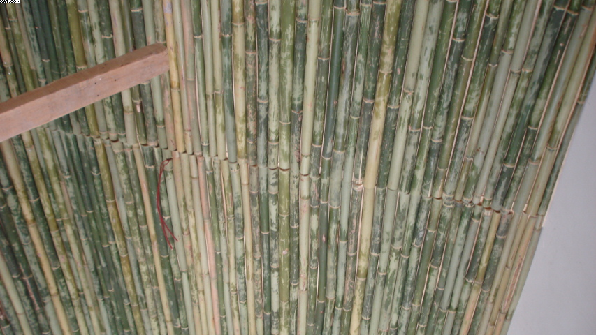 竹子吊顶效果图