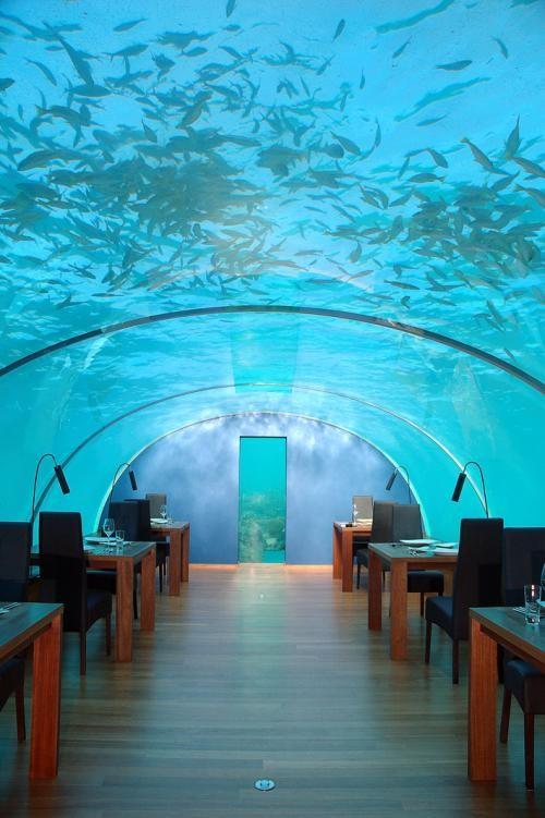 马尔代夫海洋餐厅