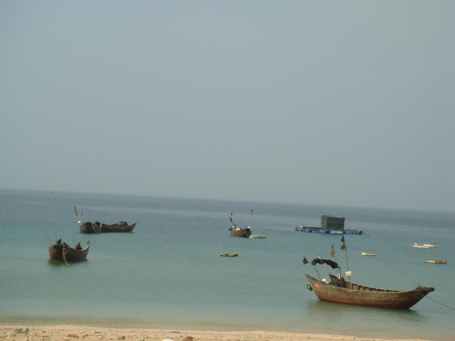 贝壳,沙滩和海鲜大餐***