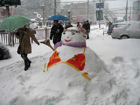 【欣赏】雪中的精灵 - 深圳房地产信息网论坛