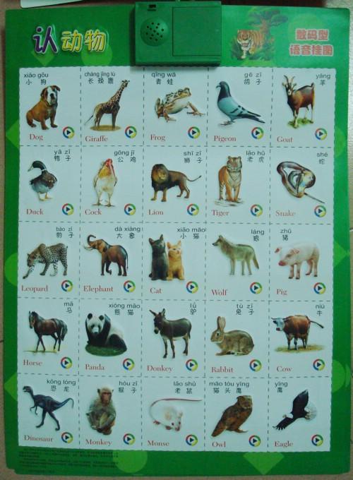 孩子培养教育 识动物.识水果.识拼音的最新语音挂图